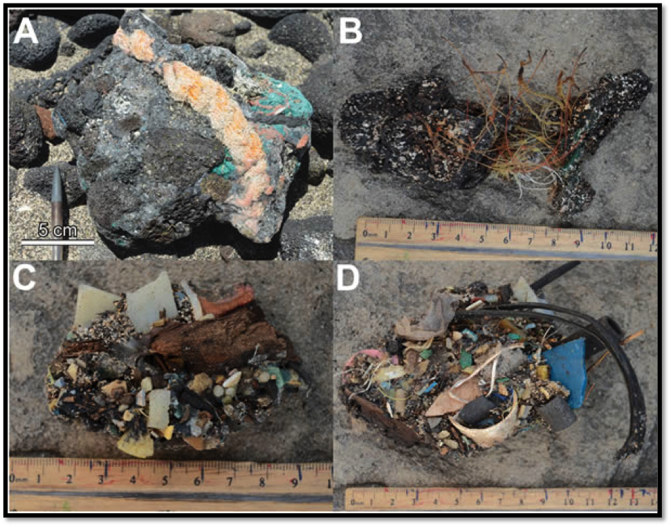 Photo: Corcoran (2012) Photographs of plastic plastiglomerate on Kamilo Beach.