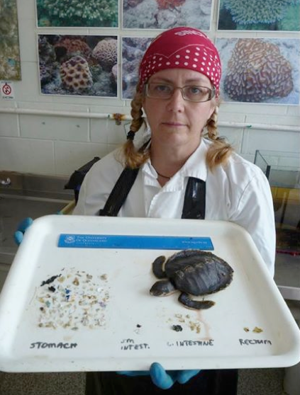 Screen Photo: Dr Kathy Townsend from Turtles in Trouble with the debris extracted from a coastal sub-adult flat back turtle in Moreton Bay. Much of this was plastic bag remnants.